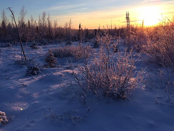 Snow-scape-2.jpg