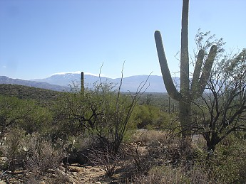 Tanque-Verde-Mountains-from-Bear-Canyon-