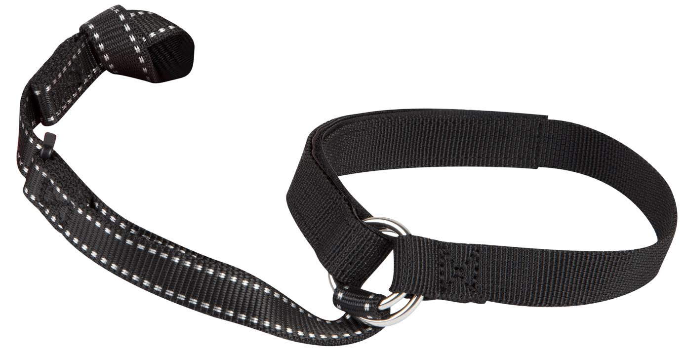 Fritschi Diamir Ski Leash