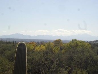 Santa-Rita-Mountains-from-foothills-of-t