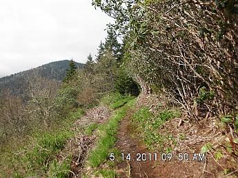 Spring-Trip-3-2011-062.jpg