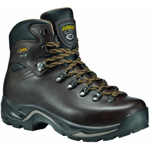 photo: Asolo Men's TPS 520 GV backpacking boot