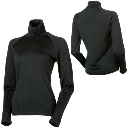 photo: Icebreaker Bodyfit 260 Polo base layer top