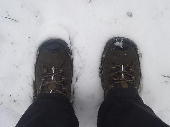 Top_Snow.jpg