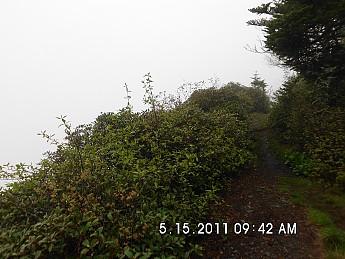 Spring-Trip-3-2011-136.jpg