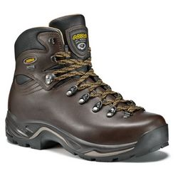 photo: Asolo TPS 520 GV backpacking boot