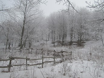 Max-Patch-Dec-2010-100.jpg