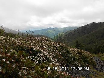 Spring-Trip-3-2011-151.jpg
