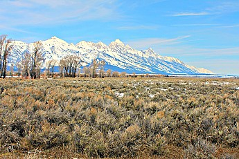 2320-Tetons-from-NorthSpring-Creek-Road-