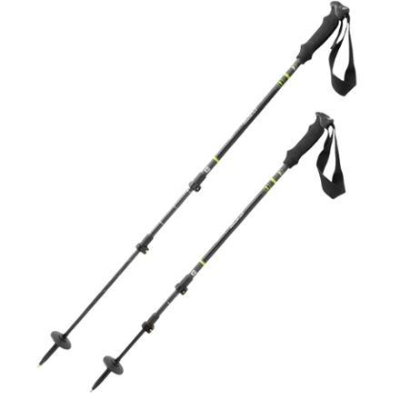 photo: REI Carbon PowerLock rigid trekking pole