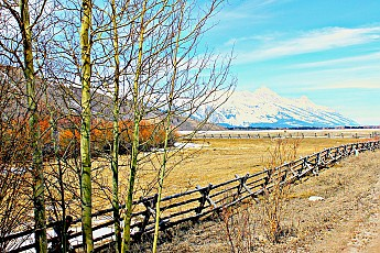 2336-Tetons-from-north-Spring-Creek-Road