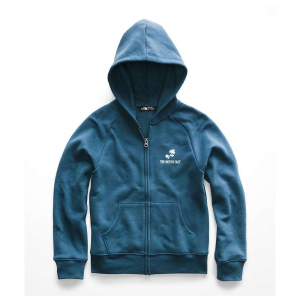 The North Face Logowear Full-Zip Hoodie