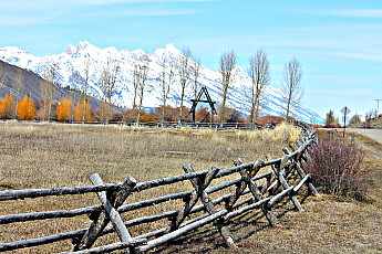 2340-Cottonwoods-and-Grand-Teton-from-no