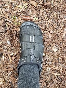 campster-socks.jpg