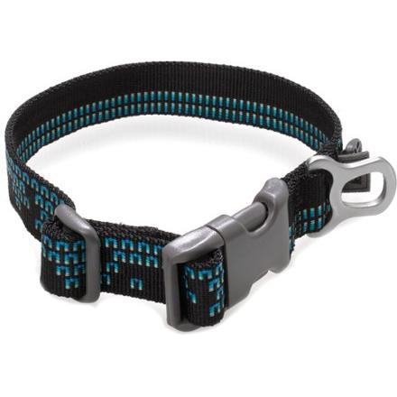 photo: REI Dog Collar dog collar