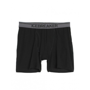 photo: Icebreaker Anatomica Relaxed Boxers w/Fly boxers, briefs, bikini