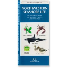 Waterford Press Northwestern Seashore Life: An Introduction to Familiar Plants and Animals