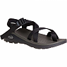 photo: Chaco Men's Z/Cloud 2