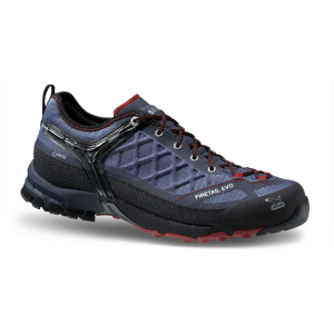 photo: Salewa Firetail EVO GTX approach shoe