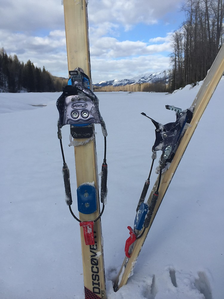 photo: Alpina Discovery 80 nordic touring ski