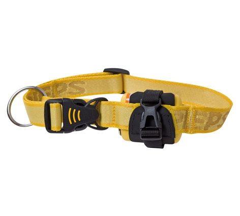 photo: Pieps TX 600 Dog Collar avalanche safety device