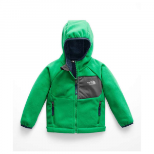 photo: The North Face Boys' Chimborazo Hoodie fleece jacket