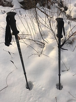 Poles-1.jpg