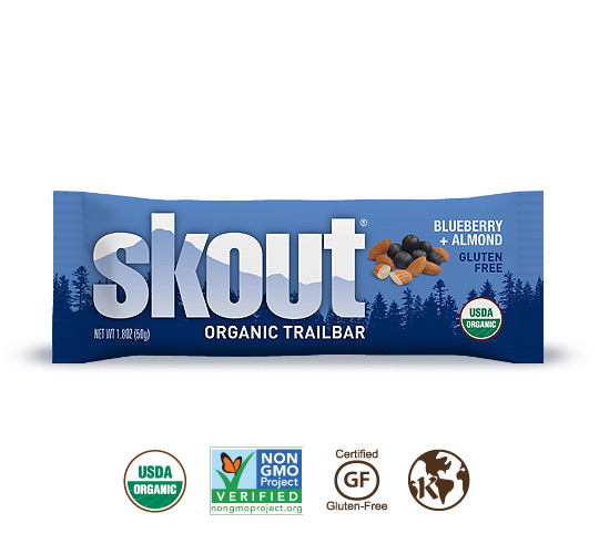 Skout Organic Blueberry + Almond Trailbar
