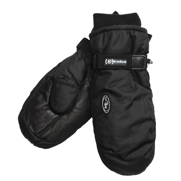 photo: Grandoe Two Pounder Ski Mitt insulated glove/mitten