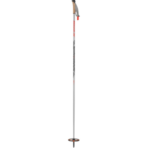Swix Mountain Ski Pole