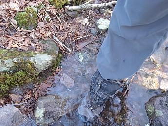 Trail_inundated.jpg