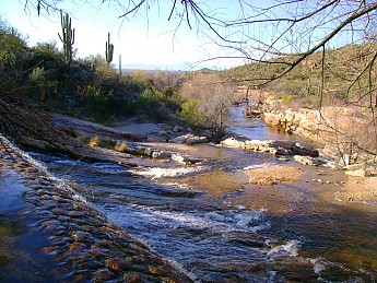 11-Sabino-Dam-near-Phoneline-Trail-head-