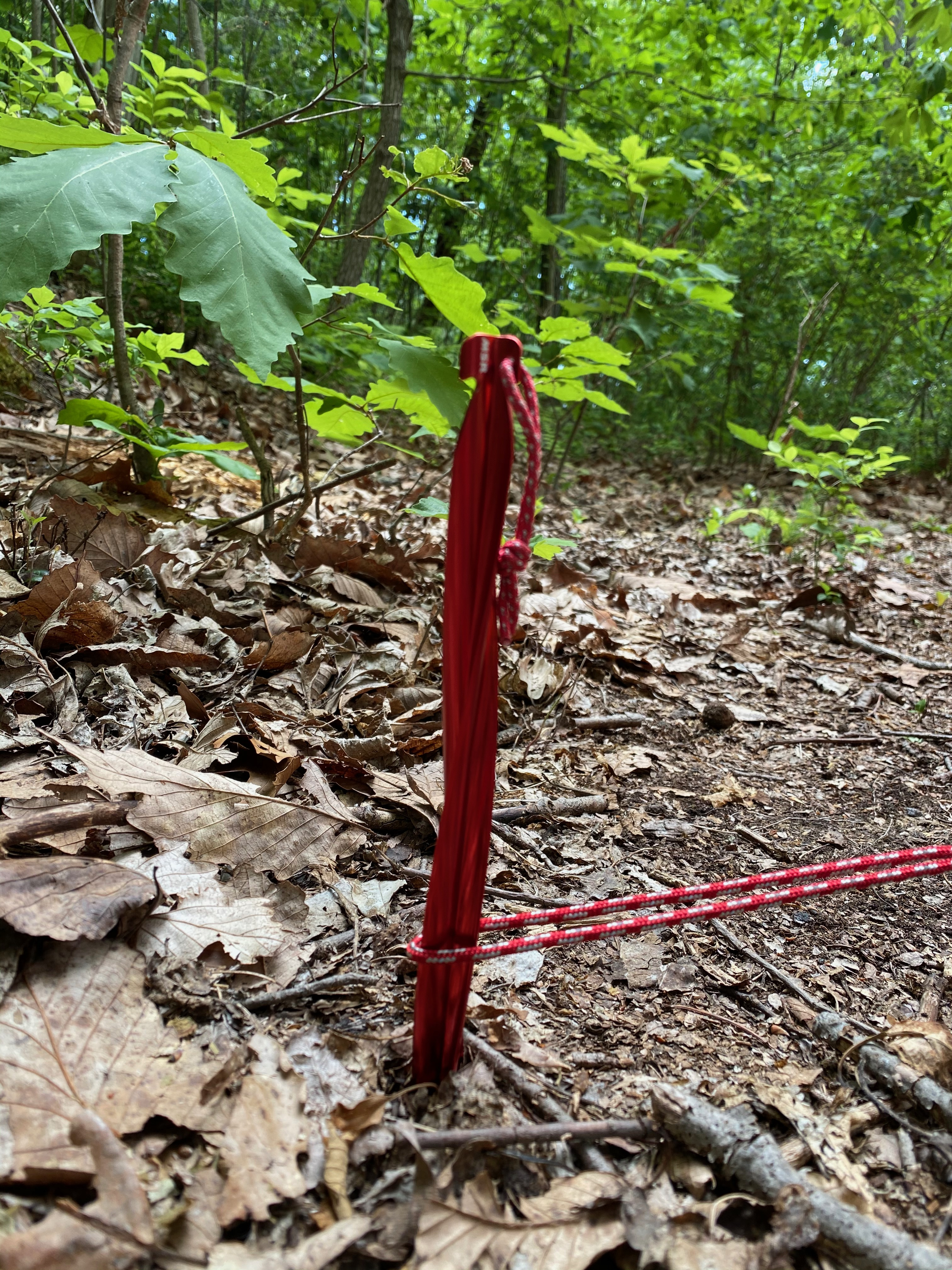 photo: MSR Cyclone Tent Stakes stake