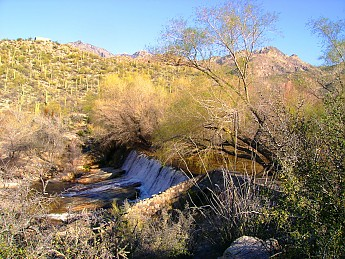 15-Southeast-side-of-Sabino-Dam-3-2-13-0