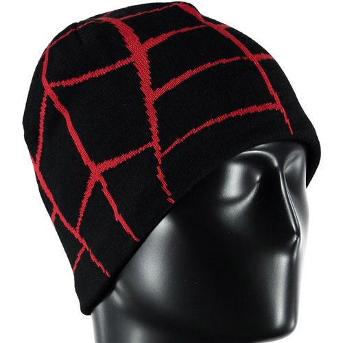 photo: Spyder Web Hat winter hat